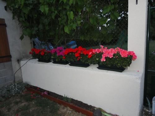 2011-05-25 004.jpg